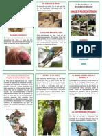 triptico de animales en peligro de  extension.docx
