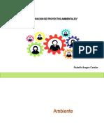 Diapositivas Sesión 1 y 2 Proyectos Ambientales.pdf