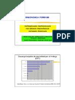 8- Enf. Profesionales por Riesgos Ergonomicos .pdf
