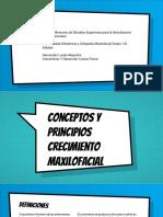 Alex Conceptos y Principios