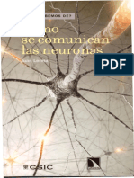 Como se comunican las neuronas.pdf