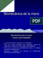 8-Carpo-y-Mano.pdf