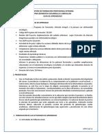 guia de analisis (1).docx