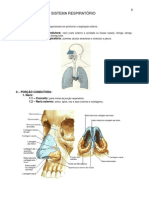 9.sistema_respiratorio