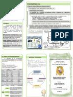 triptico alteraciones.pdf