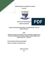 TESIS ARRITMIAS CARDIACAS.pdf