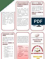 triptic1.pdf