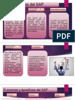 Características y funciones del SAP.pptx