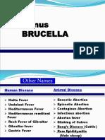 lecture brucella 28-9-18.ppt