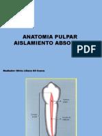 Anatomia pulpar aislamiento absoluto