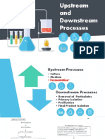 Upstream and Downstream Processes