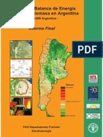 Analisis_balance_Energia BIOMASA INTA.pdf