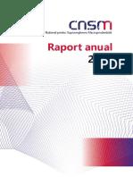 Raport-CNSM.pdf