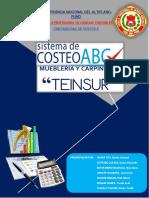ABC TEINSUR TERMINADO OFICIAL.pdf