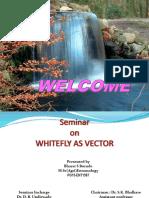 bharatseminarfinalppt-170301164314.pdf