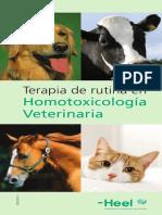 Terapia de rutina VETERINARIA(3).pdf