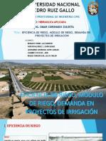 Eficiencia de Riego, Módulo de Riego y Demanda en Proyectos de Irrigación