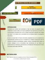 Palma Vera Freddy - 9no b Ecoturismo - La Situación Del Turismo en Ecuador