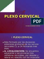 PLEXO-CERVICAL1.pptx