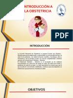 Campos de Acción - Diapos - Obstetricia