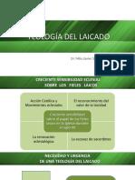 01. Introducción Teologia del laicado 7.pptx