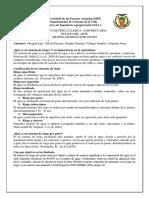 ESTADO DEL ARTE FISICA.docx