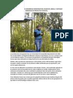 Observaciones Sobre El Desarrollo Fenológico Del Aguacate 3