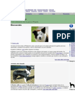 Portales de Wikipedia