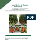 Guía para el Cultivo de Jitomate Hidropónico.docx