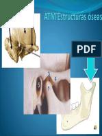 ATM Estructuras Óseas