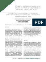 22-Texto del artículo-205-1-10-20180131.docx