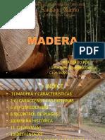 estructura 3 maderaAAA