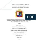 Tesis_uriel Montufar y Pp (1)