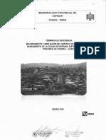 TDR SANEMAIENTO 2018.pdf