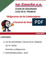 CAP2.- Obligación de Los Colaboradores y Personal de Terceros