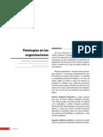 Patologíasenlasorganizaciones.pdf