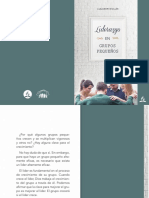 Curso Liderazgo Pg 2019