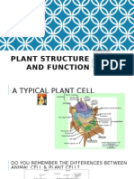 lecture note plant structure and function