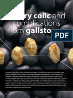 BPJ61 Gallstones
