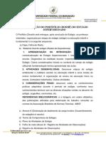 7OrganizaçãoPortfólio(dossiê)
