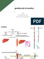 Insulina_epigenética