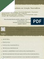 SANCHIS-Protocolo Anestesia cirugia Pancreas-Sesion SARTD-CHGUV-20-12-11.pdf