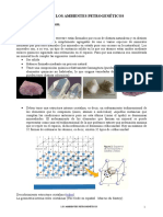temas protogeneticos- minerales