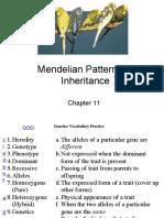 Ch 11 Mendelian Patterns of Inheritance