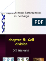 98308656-Chapter-5-2-Meiosis