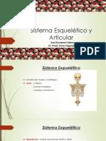 2 - Sistema Esquelético y Articular.