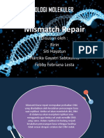Mismatch Repair Fix