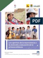 Neurociencias y El Desarrollo Temprano