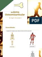 sistema osteomioarticular