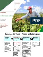 GORE_Taller Cadenas_Analisis de la Cadena.pdf